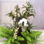 Panda Bear Centerpiece