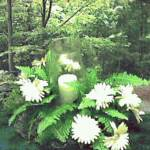 Daisy includes several daisies, fern and a hurricane lantern with a pillar candle.